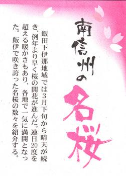 南新聞名桜.jpg
