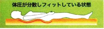 寝姿勢イラスト正常2.png
