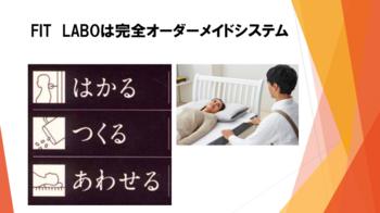 エプソンブログ用FITLABOシステム.png
