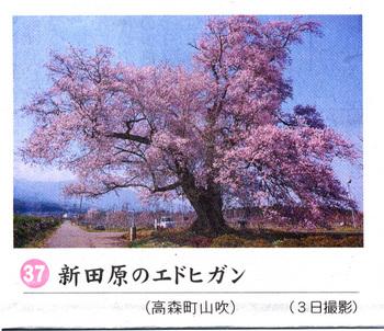 新田原2018.4.7.jpg