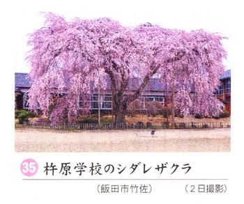 杵原小学校2018.4.7.jpg