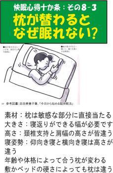 枕が変わると眠れない.png
