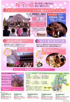 桜守 2.jpg
