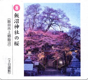 桜情報8.png