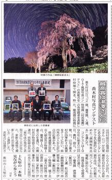 氏乗り桜写真.jpg