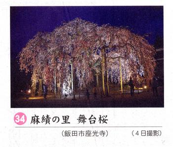 舞台桜2018.4.7.jpg