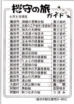開花情報4.7.jpg