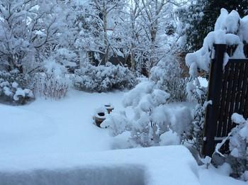 雪2.jpg